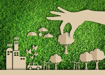 Navigating Green Requirements image 1