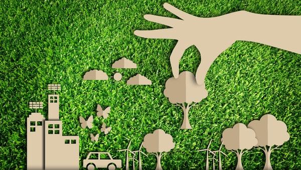 Navigating Green Requirements