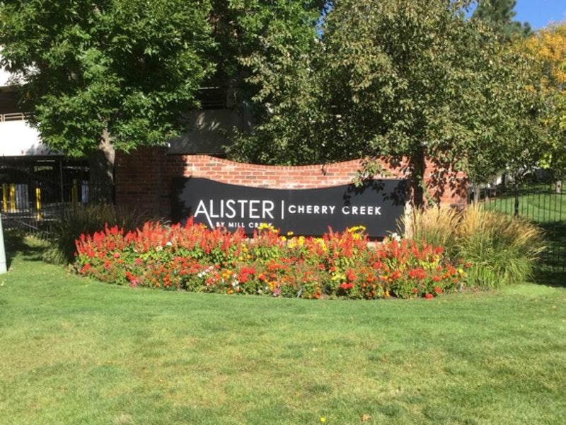 Alister Cherry Creek image 5