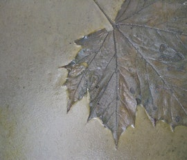 Leaves and other natural designs can be imprinted on resurfaced concrete flooring (thumbnail)