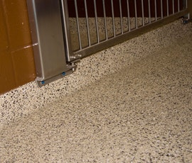 Resin chip poxy coatings flooring is the perfect solution for animal clinics and holding cells. (thumbnail)