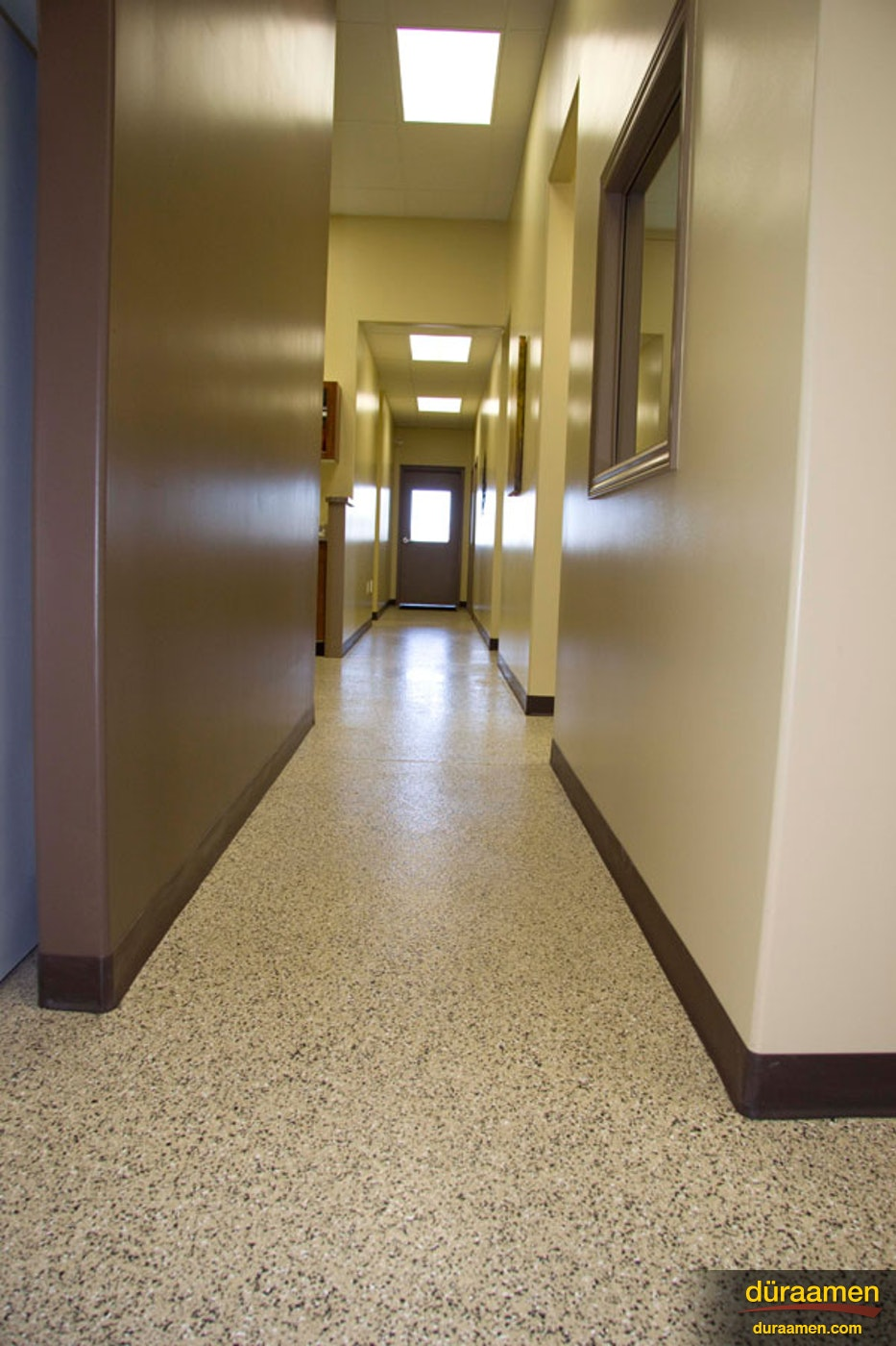 Veterinary Clinic Toronto Duraamen