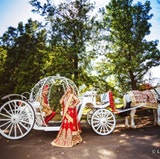 Dream Horse Carriage Company- the perfect addition for your Wedding. https://www.facebook.com/DreamHorseCarriageCompany