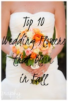 Top 10 Wedding Flowers that Bloom in Fall